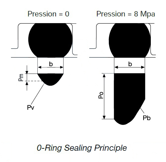 O型圈密封原理 | O ring Sealing Principle